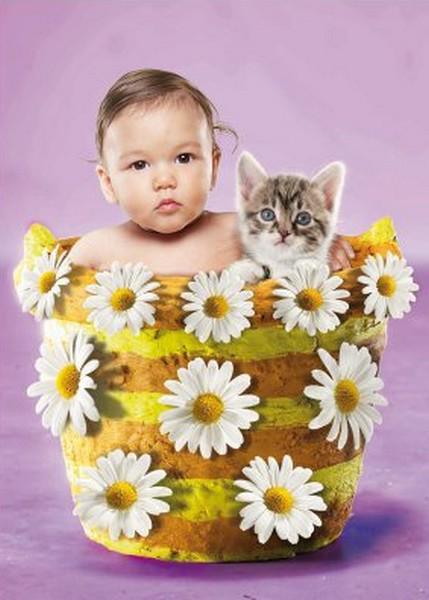 bebe et minet dans pot de fleurs avec marguerites